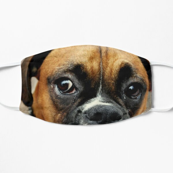 Not Happy - Boxer Dog Series Mask