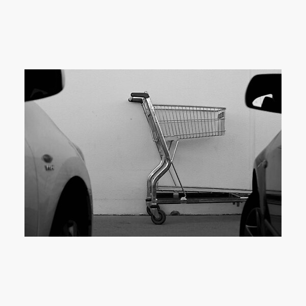 Sizing up their carpark nemesis. Photographic Print