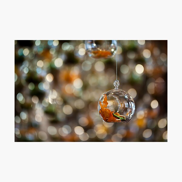 Suspended Bokeh Photographic Print