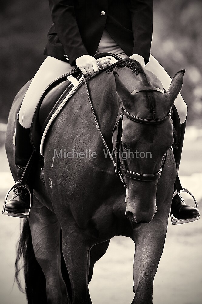Halt by Michelle  Wrighton