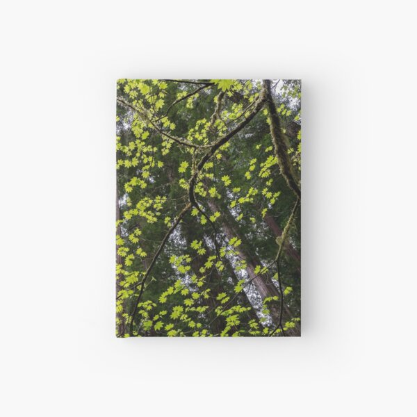 Vine Maple Hardcover Journal