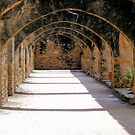Arches at San Jose Mission by Brian Gaynor