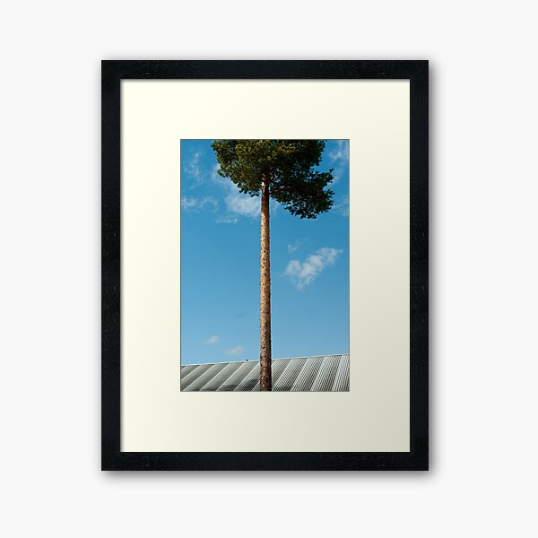Grow Framed Art Print