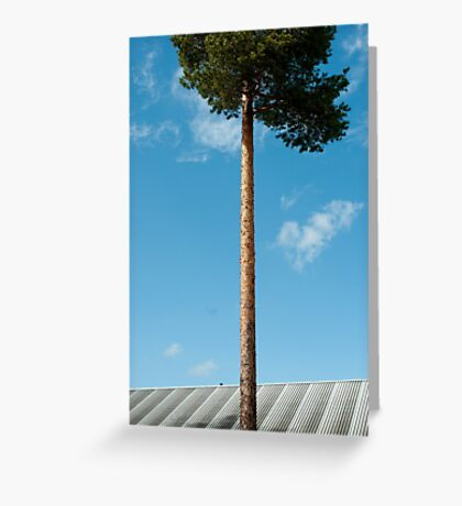 Growing Above You Greeting Card