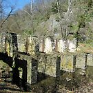 The Ruins of a Pulp Factory, Harpers Ferry, WV by Bine