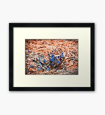 If You See... Framed Print