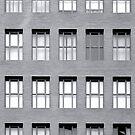 Windowpane by Carlos Neto