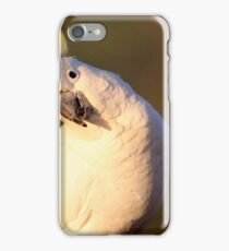 cocky 2 iPhone Case/Skin