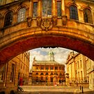 Arch by ajgosling