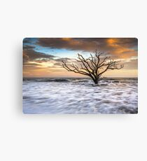 Botany Bay Edisto Island SC Boneyard Beach Sunset Canvas Print