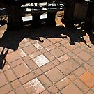 sculpture garden shadow  by richard  webb