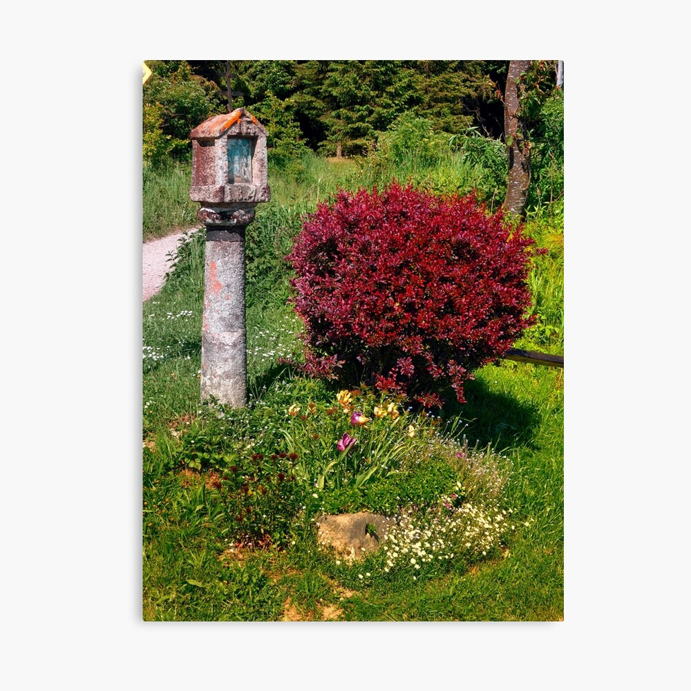 Wayside cross and a bush Canvas Print