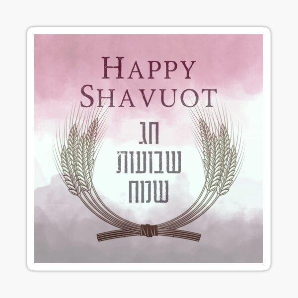 Holiday Banners Passover Sukkot Shavuot Chag Sameach Hanukkah Purim