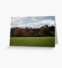 Wall of Color Greeting Card