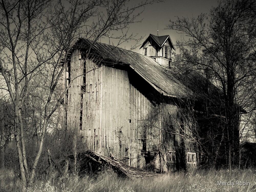Barn so Beautiful by Marcia Rubin