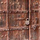 Doors of Jaipur - I by redscorpion