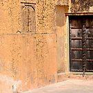 Doors of Jaipur - II by redscorpion
