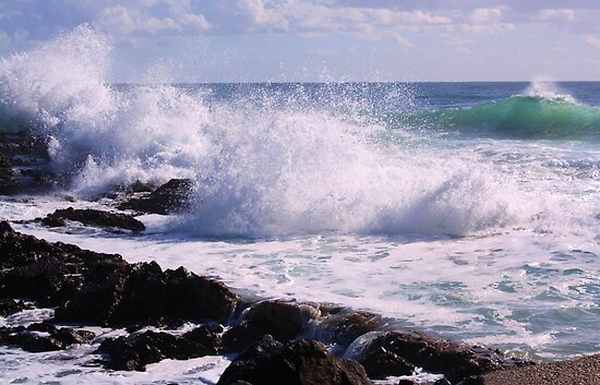 snapper rocks ... by gail woodbury