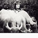 North Vietnam ~ Buffalo Boy by Yves Schiepek