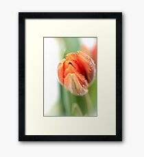 Stop drivin' me mad... Framed Print