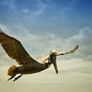 Flying high by zzsuzsa