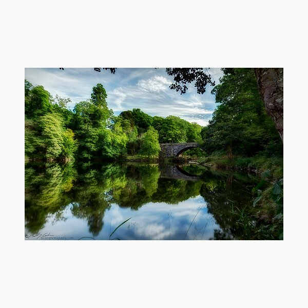 Summer on the river Photographic Print