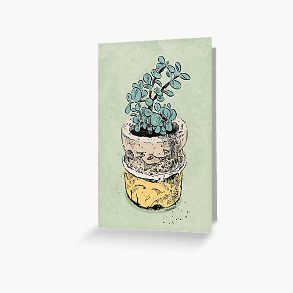 jade plant Greeting Card