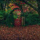 The Gate by Steve Randall