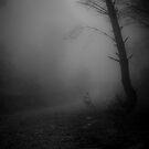 down where ?!? by paul erwin