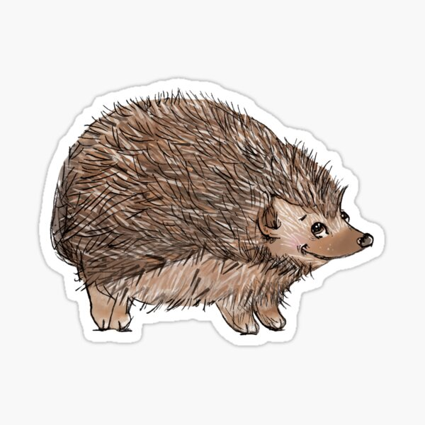 I Love Hedgehogs Sticker