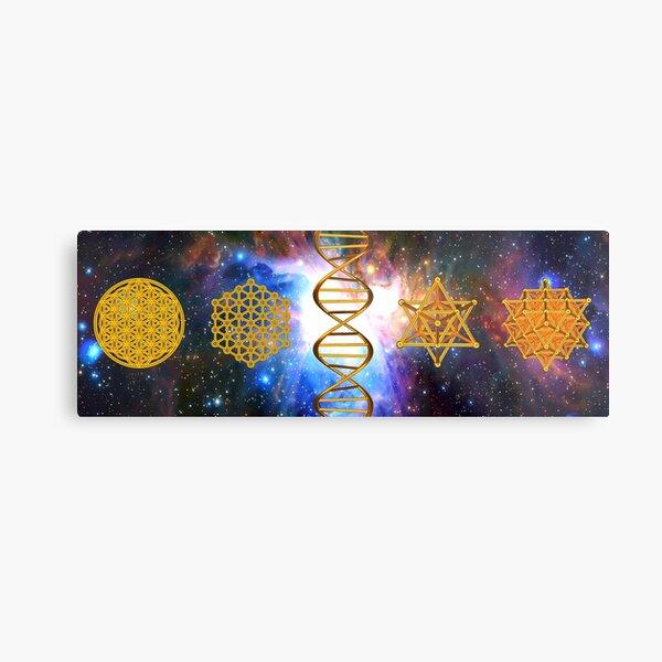 Flower of life DNA Merkaba Metal Print