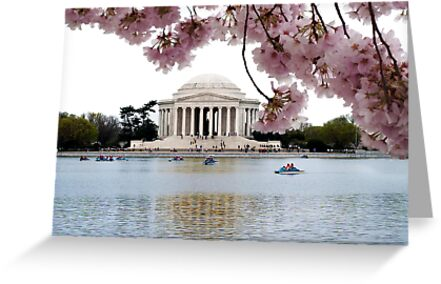Blossoms Over Jefferson by Jane Brack
