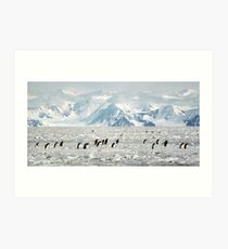 Penguin Highway Art Print