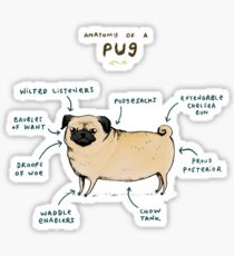 Anatomy of a Pug Sticker