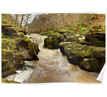 The Strid, Wharfedale Poster