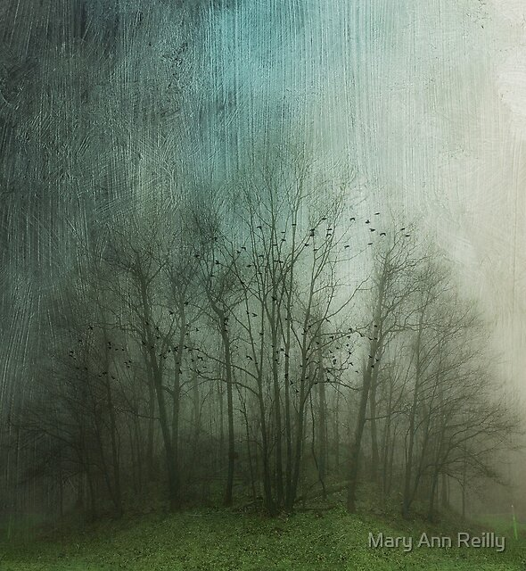 Fogbound by Mary Ann Reilly