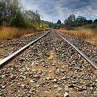 Tea Tree Track - Tasmania by clickedbynic