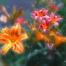 Lillies in the Fog Card by Wayne King