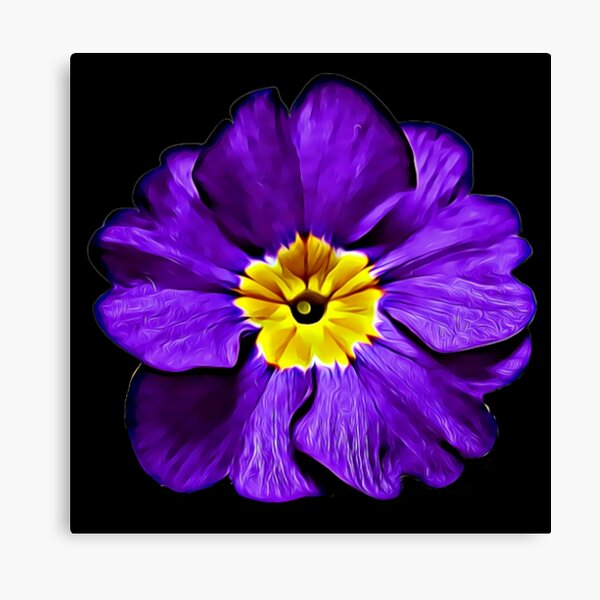 Purple Primula Primrose Oil Painting Style Pattern Gifts Canvas Print