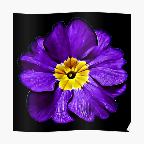 Purple Primula Primrose Oil Painting Style Pattern Gifts Poster