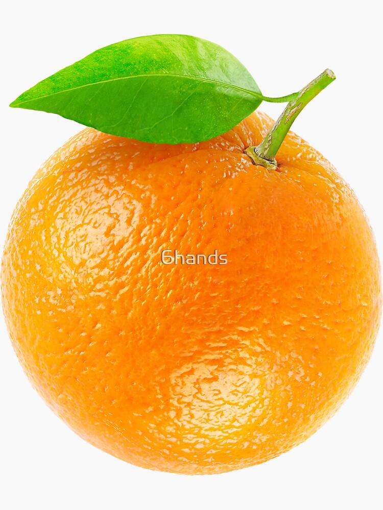 Fresh orange by 6hands