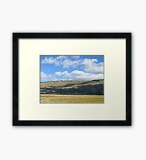 scenic Otago Framed Print