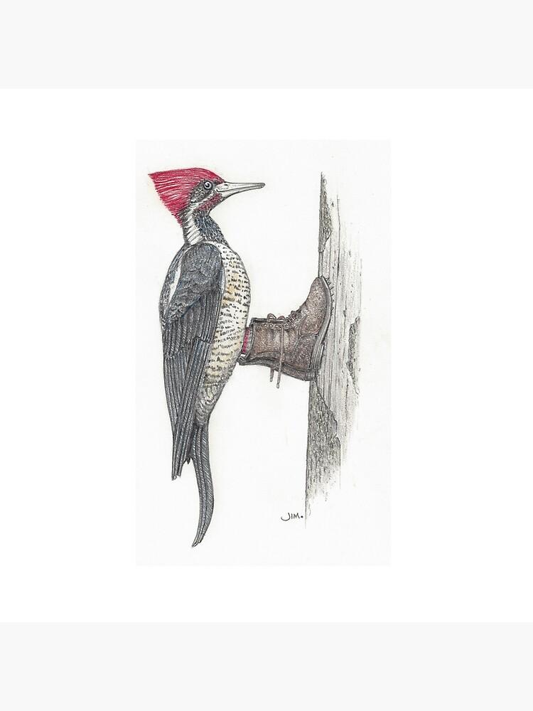 Woodpecker in logging boots by JimsBirds