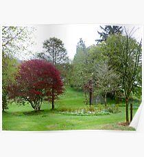 Gardens Of Glebe House Poster