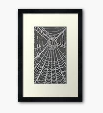 frosted web Framed Print
