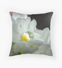 Sun on Crocus and Raindrop Throw Pillow