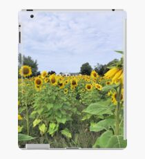 The Homestead in Color iPad Case/Skin
