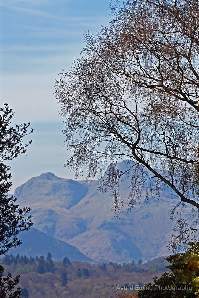 View from Brockhole, Lake Windermere, Cumbria by Astrid Ewing Photography