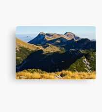 A view to the top Canvas Print