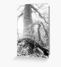 Nature 13 Greeting Card